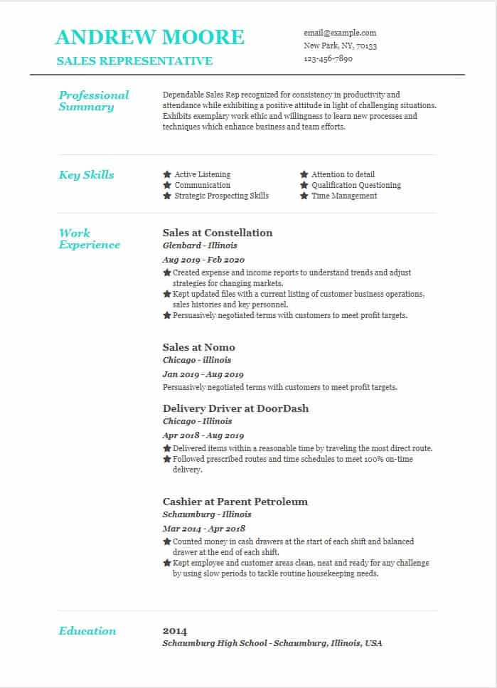 sales representative resume